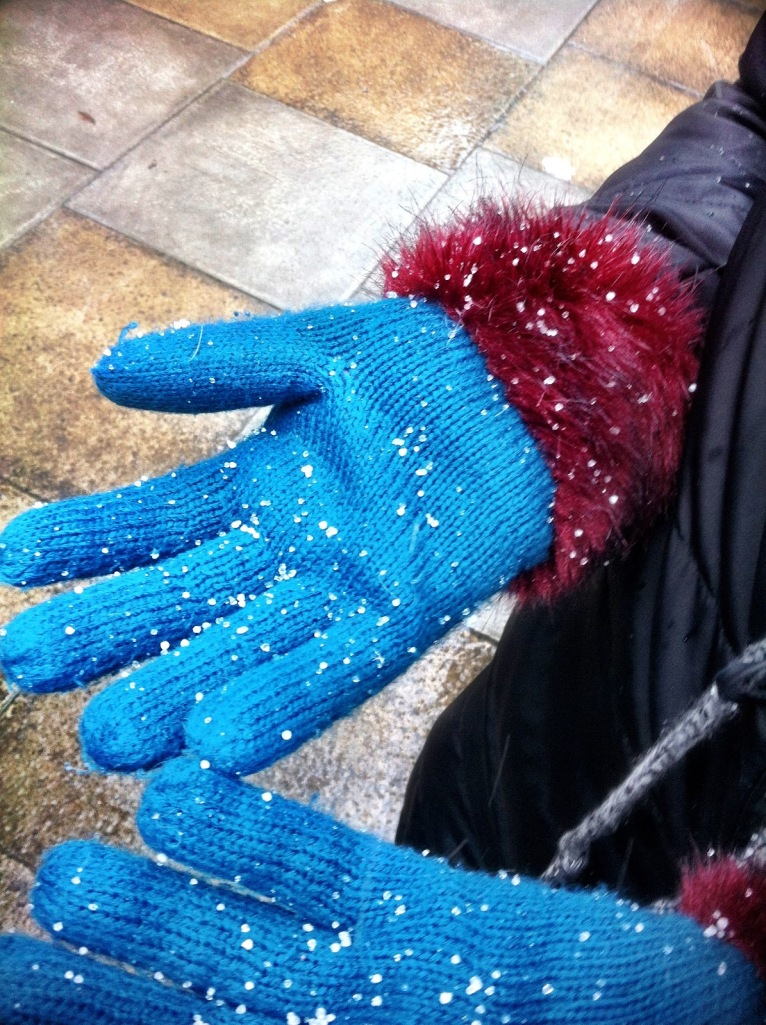 I asked this stranger if I could take a picture of her gloves since we  were having really odd snow/hail stuff. Figured I'd better post it.